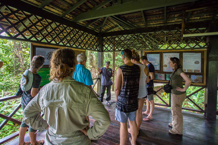 How Sukau Rainforest Lodge Practices Sustainability And Being Eco Friendly as An Eco Lodge