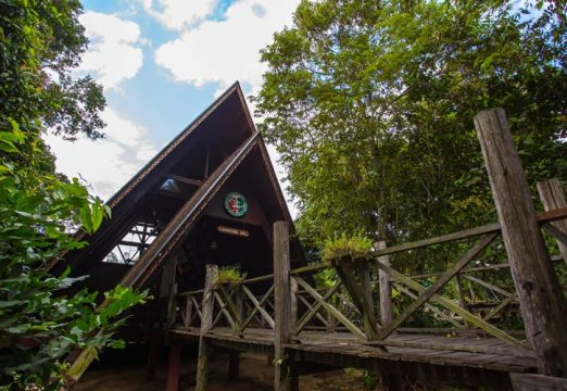 Sukau Rainforest Lodge – Gomantong Hall