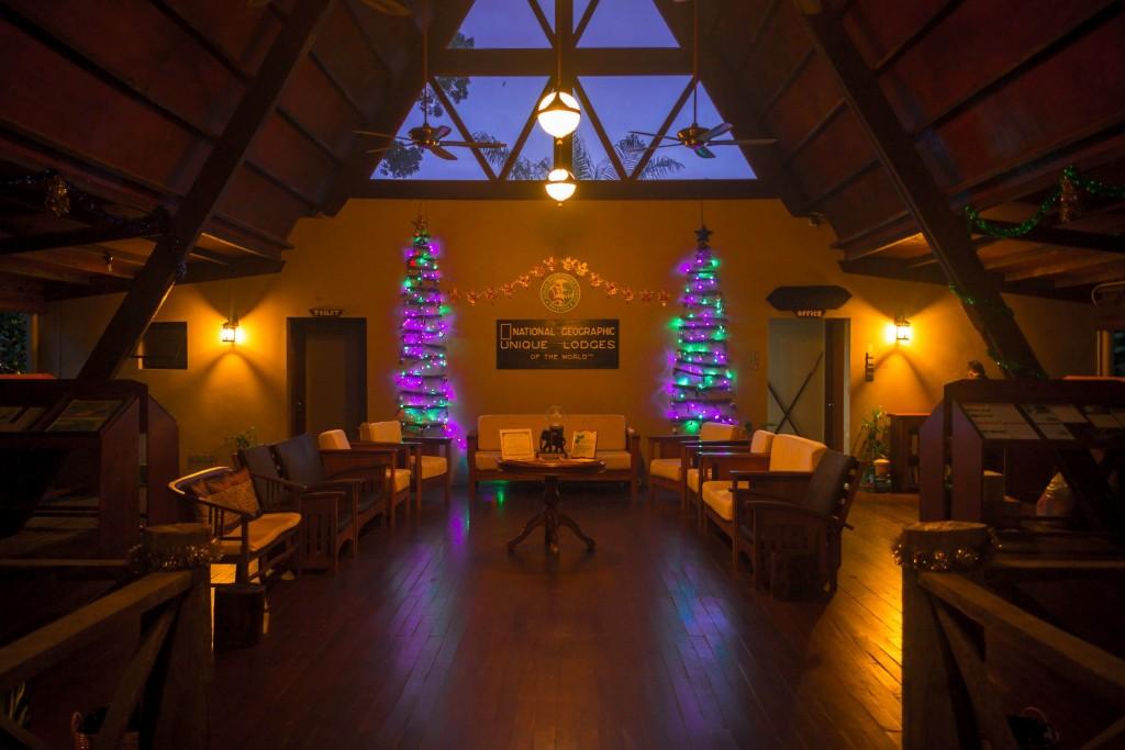 Gomantong Hall is vibrant with Christmas Trees