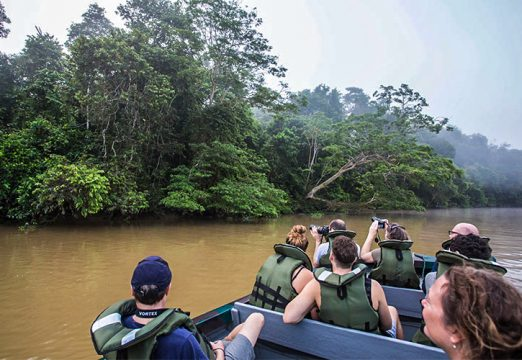 River cruise at Kinabatangan River