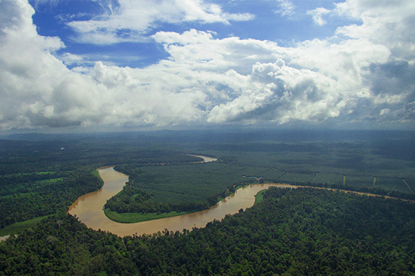 Sukau Rainforest Lodge's River Clean Up Mission & World Rivers Day