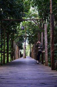 Sir Attenborough Boardwalk